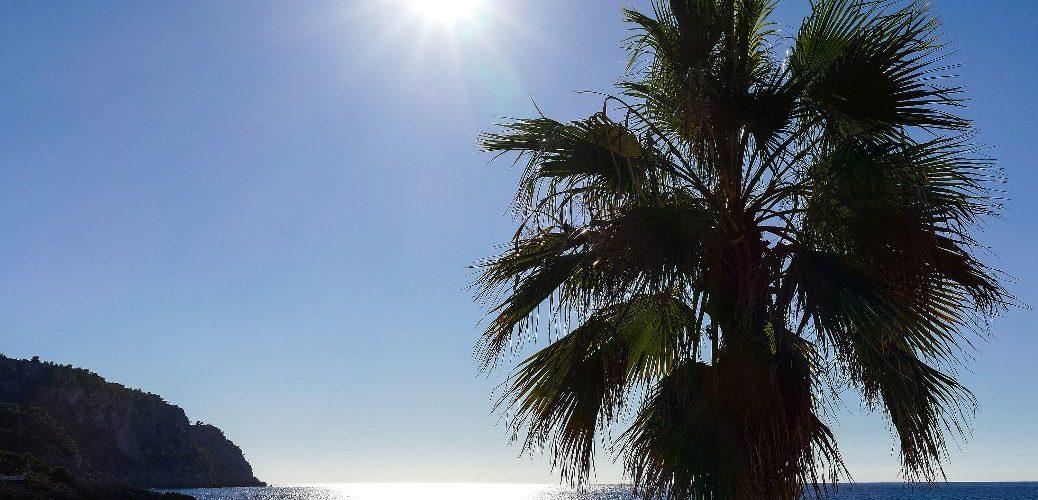 Mallorca - Blick aufs Meer